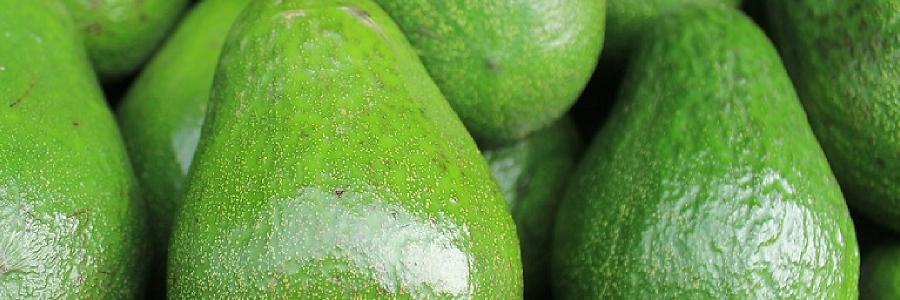 Gefahrenzone Küche: Ärzte warnen vor Avocados