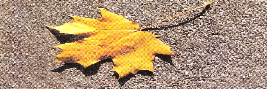 Herbstgutachten der Wirtschaftsforscher – Was jetzt Not tut