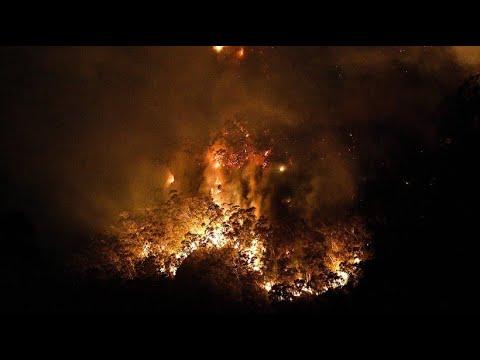 Winde befeuern Buschbrände – Bereits Zwei Millionen Hektar verbrannt