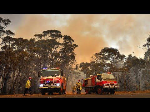 Buschbrände und Rekord-Hitze: Australien verhängt Ausnahmezustand