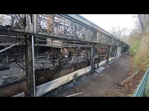 Affenhaus in Krefelder Zoo abgebrannt