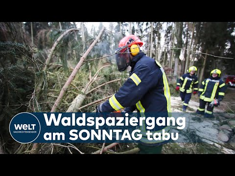 HEFTIGES ORKANTIEF KOMMT: Schwerem Sturm ab Sonntag – bis zu Windstärke 12 droht