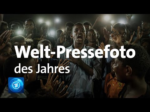 Welt-Pressefoto des Jahres