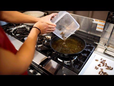 Japanische Nudelsuppe mit frittierten Grillen