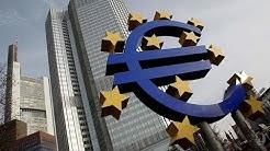 FDP fordert Einführung einer Großkreditgrenze für EZB