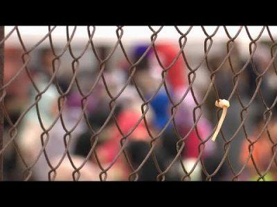 Corona-Krise: Familiennachzug für Flüchtlinge 2020 um die Hälfte reduziert